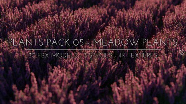 meadowplant_pack