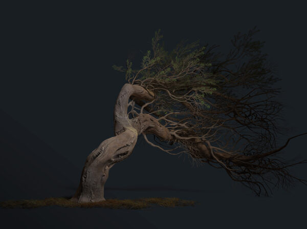 tyler-smith-render05-scaled