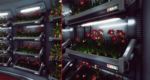 012_Plant_Beds-scaled