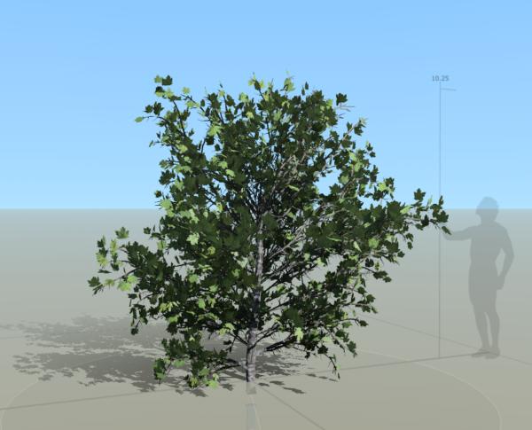 03speedtree