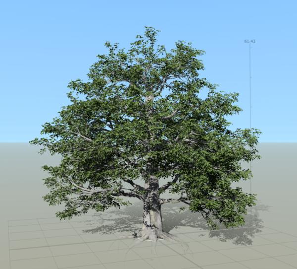 04speedtree