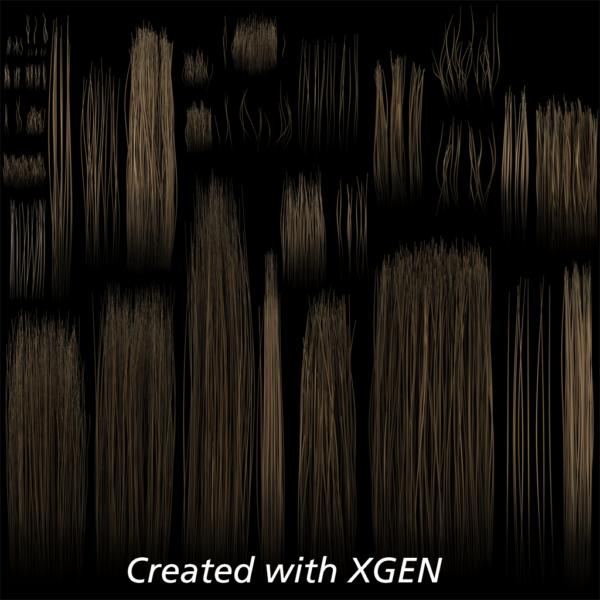 1b-xgen-texture
