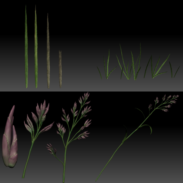 7_grass_all